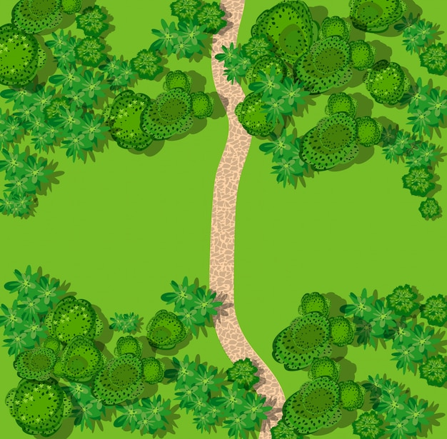 Bovenaanzicht van het landschap met bos Premium Vector