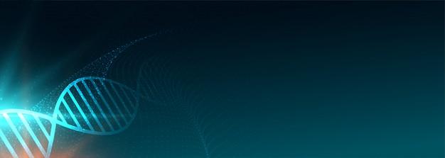 Brede dna-structuurbanner voor medische wetenschap Gratis Vector