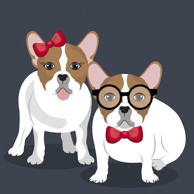 Bulldog paar illustratie Gratis Vector
