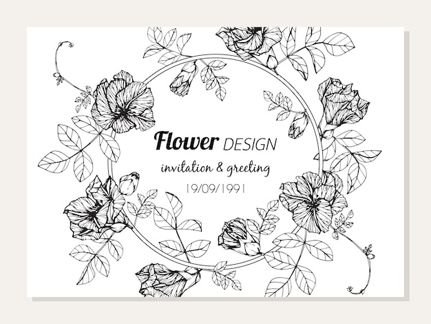 Butterfly pea bloem frame tekening   Vector   Premium Download