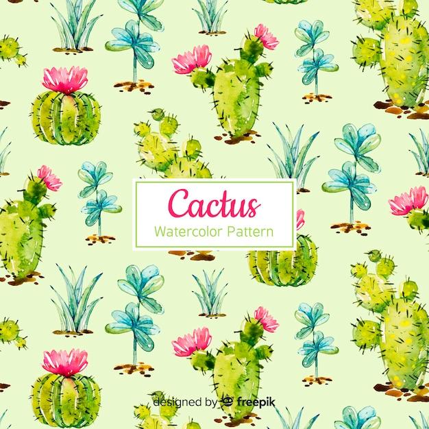 Cactus patroon collectie Gratis Vector