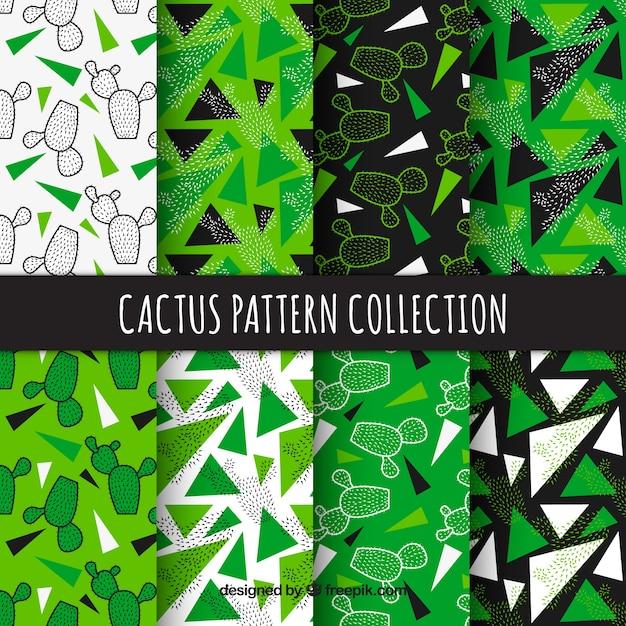 Cactuspatronen met moderne stijl Gratis Vector