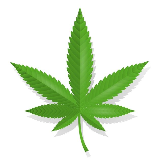 Cannabis leaf pictogram Gratis Vector