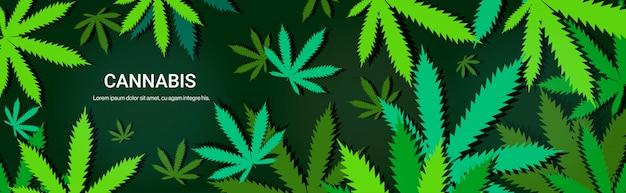 Cannabis of marihuana verlaat drugsgebruik concept horizontale kopie ruimte Premium Vector