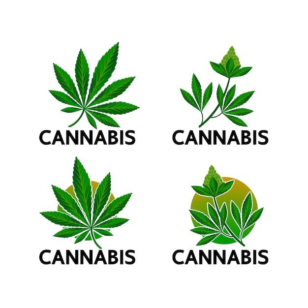 Cannabis voor medicinaal gebruik. Premium Vector