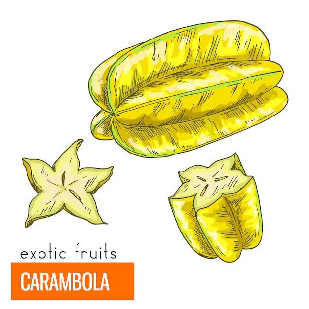 Carambola. kleur vectorillustratie. Premium Vector