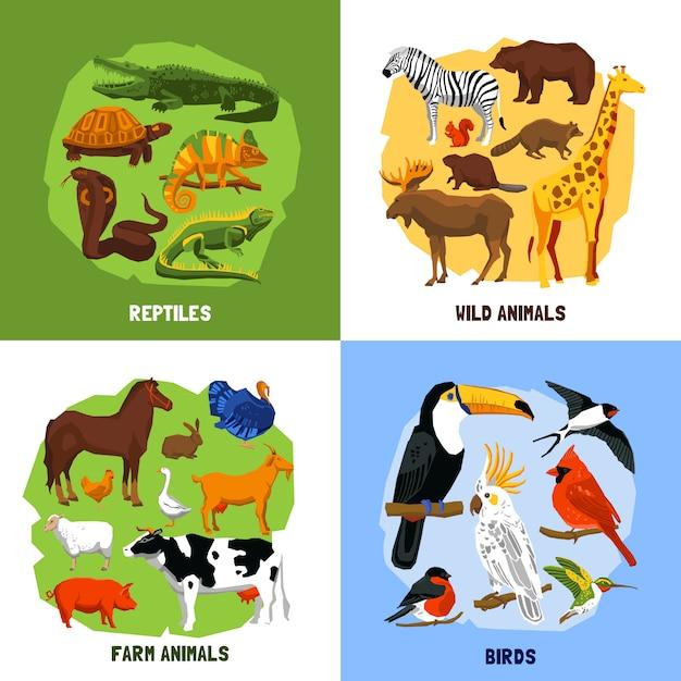 Cartoon 2x2 dierentuinafbeeldingen Gratis Vector