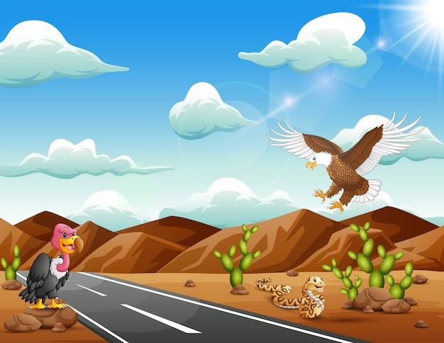 Cartoon adelaarsvogel, gier en slang leven in de woestijn Premium Vector
