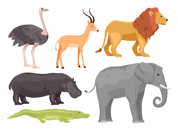 Cartoon afrikaanse dieren instellen. struisvogel, gazelle, leeuw, nijlpaard, olifant, krokodil. safari of dierentuin concept. Premium Vector