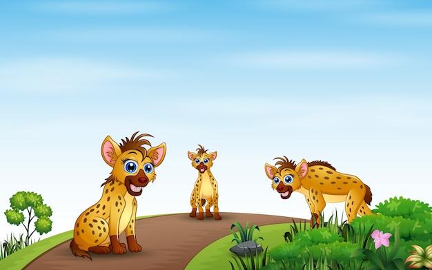 Cartoon drie hyena spelen op de natuur Premium Vector