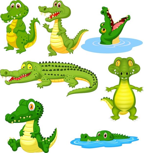 Cartoon groene krokodil collectie set Premium Vector
