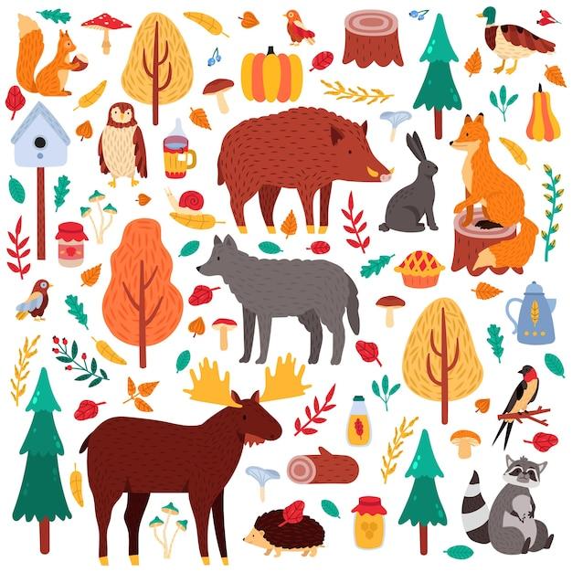 Cartoon herfst dieren. schattige bosvogels en dieren, eland eend wolf en eekhoorn, wilde bossen fauna illustratie pictogrammen instellen. wasbeer en varken, konijn, bos, vogel en beer Premium Vector