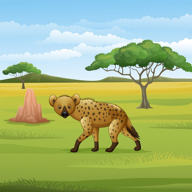 Cartoon hyena in de savanne Premium Vector