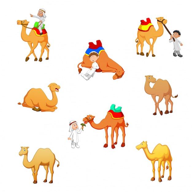 Cartoon kameel vectorillustratie Premium Vector