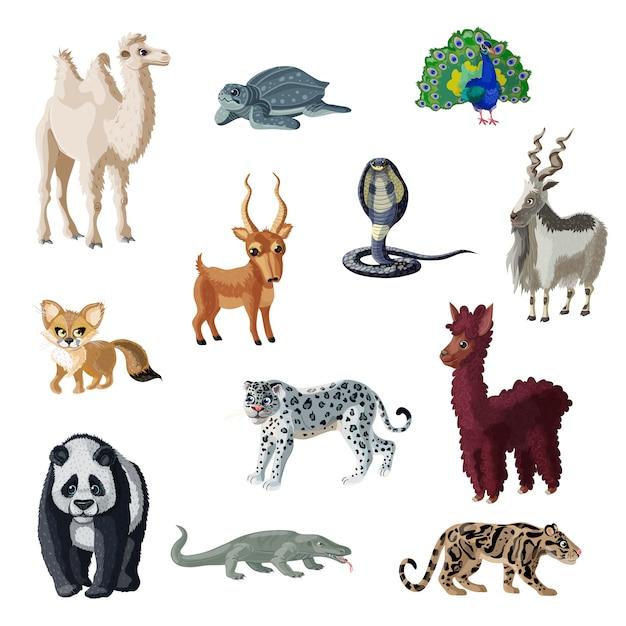 Cartoon kleurrijke aziatische dieren collectie Gratis Vector