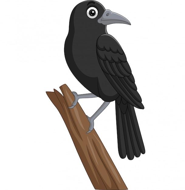 Cartoon kraai staande op een boomtak Premium Vector