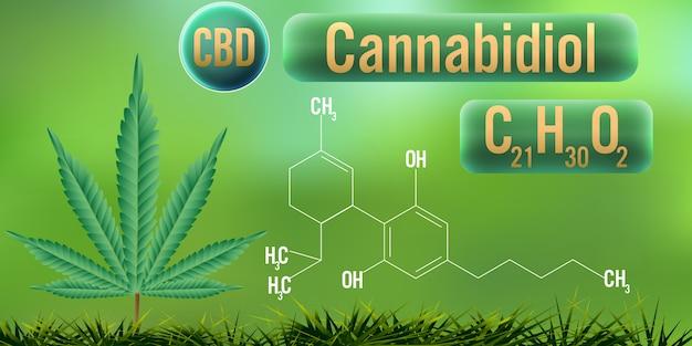 Cbd (cannabidiol) met formule Premium Vector