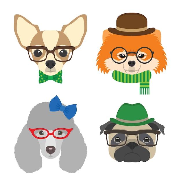 Chihuahua, pug, poedel, pommeren bril met bril en accessoires in vlakke stijl. Premium Vector