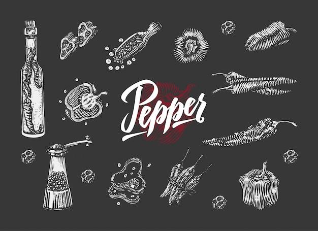 Chili pepper elements-collectie Gratis Vector