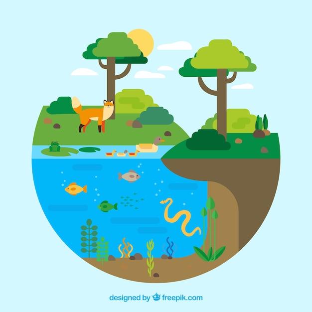 Circulair ecosysteemconcept Gratis Vector