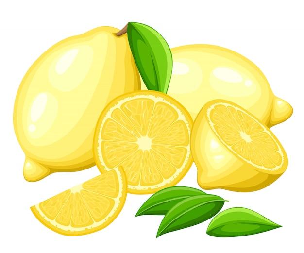 Citroen met hele bladeren en plakjes citroenen. illustratie van citroenen. illustratie voor decoratieve poster, embleem natuurlijk product, boerenmarkt. Premium Vector