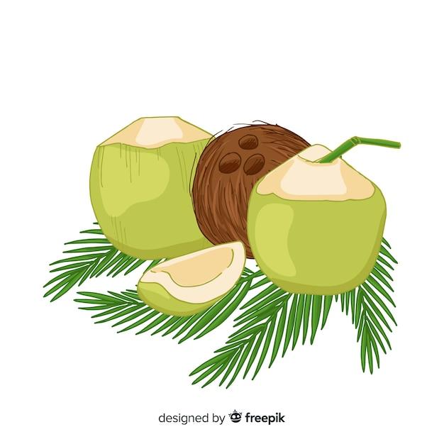 Coconuts Gratis Vector
