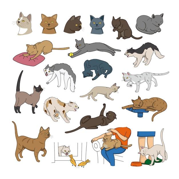 Collectie cats of different breeds Premium Vector