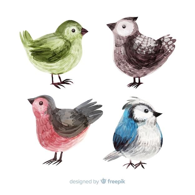 Collectie van aquarel herfst vogels Gratis Vector