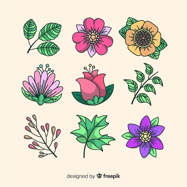 Collectie van bloemen en bladeren achtergrond Gratis Vector
