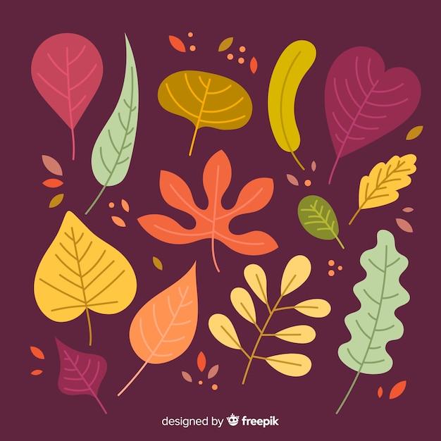 Collectie van herfstbladeren plat ontwerp Gratis Vector