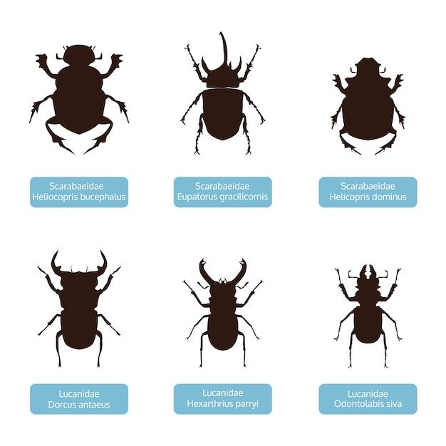Collectie van silhouet insect, dierlijke vector Premium Vector