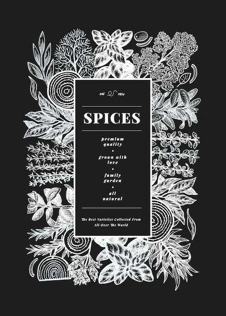 Culinaire sjabloon voor kruiden en specerijen. hand getekend vintage botanische illustratie Premium Vector
