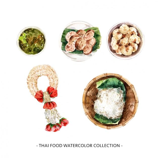 De creatieve ontwerp geïsoleerde illustratie van het waterverf thaise voedsel. Gratis Vector