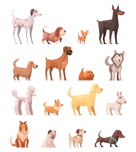 De hond kweekt retro inzameling van beeldverhaalpictogrammen met schor poedel collie herder en tekkelhond geïsoleerde vectorillustratie Gratis Vector