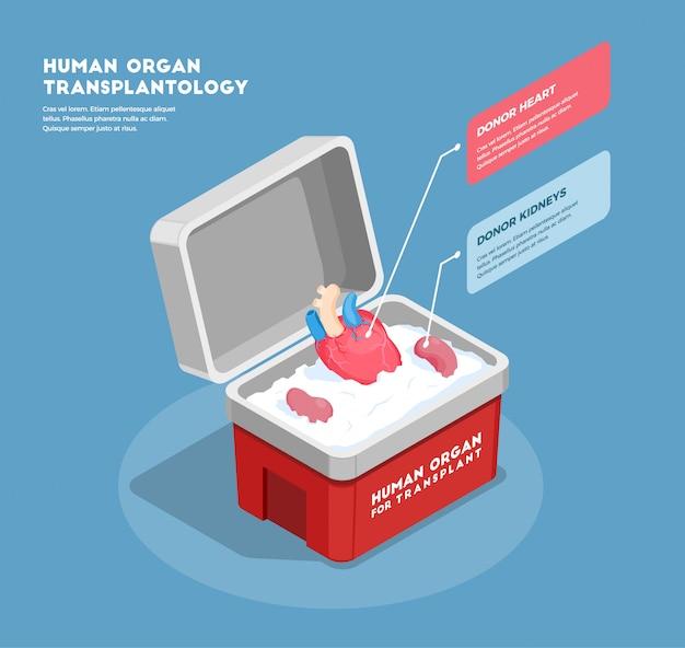 De isometrische samenstelling van menselijke organen met donorhart en nieren in medische 3d container Gratis Vector