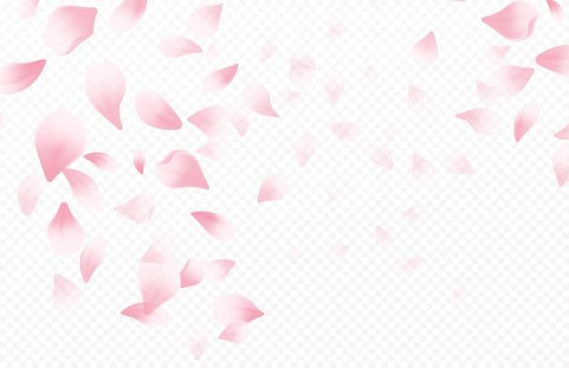 De mooie achtergrond van de lentetijd met de lente bloeiende kersenbloesem. sakura vliegende bloemblaadjes geïsoleerd op een witte achtergrond. vector illustratie eps10 Gratis Vector
