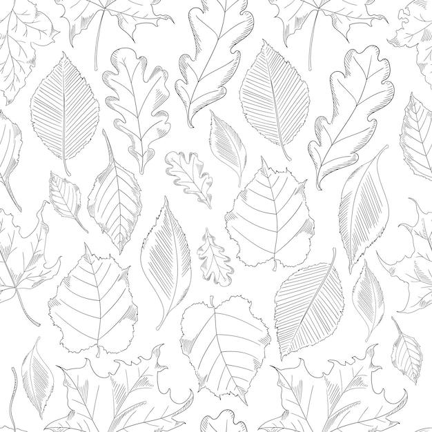 De naadloze bladeren van de patroonherfst die in een schetsstijl worden geplaatst. Premium Vector