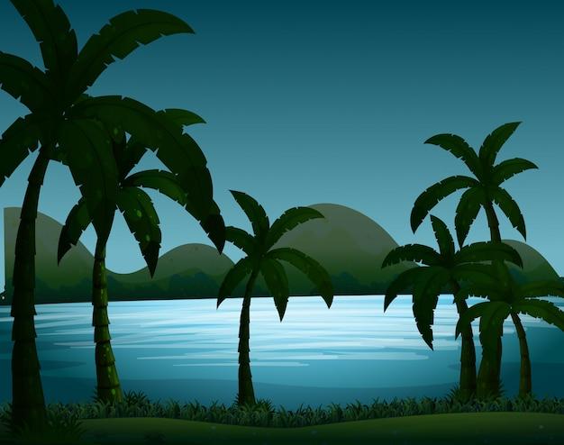 De scène van de silhouetaard met kokosnotenbomenachtergrond Gratis Vector