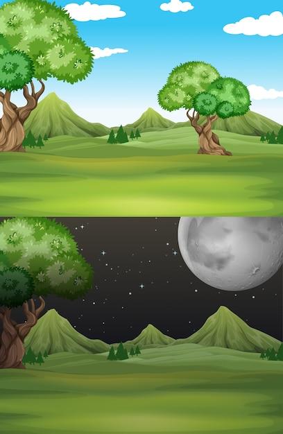 De scèneachtergrond van de aard met gebied en bomen Premium Vector