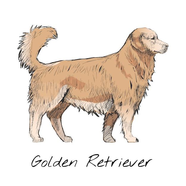 De stijl van de illustratietekening van hond Gratis Vector