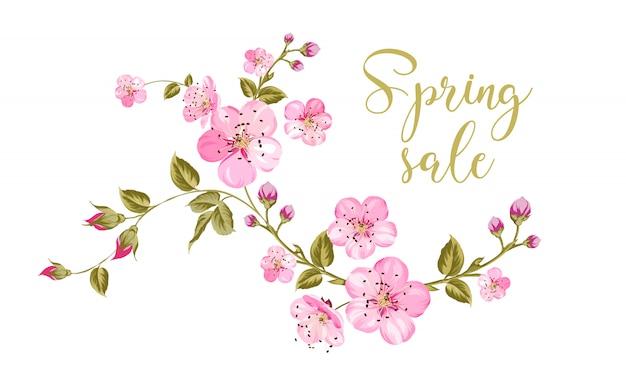 De tekst van de de lenteverkoop over witte achtergrond met de brunch van de sakurabloem. Premium Vector