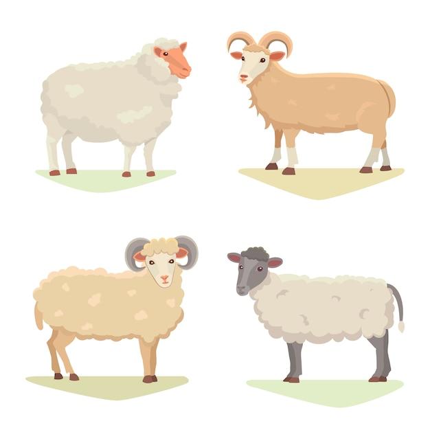 De vector vastgestelde leuke schapen en ram isoleerden retro illustratie. het bevindende silhouet sheeps op wit. farm fanny melk jonge dieren. cartoon stijl Premium Vector