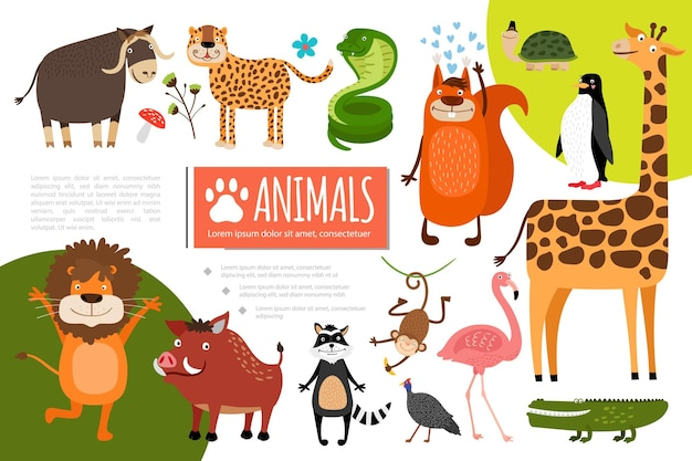 De vlakke samenstelling van dierentuindieren met buffels luipaard slang eekhoorn pinguïn schildpad giraf flamingo krokodil pauw wasbeer aap zwijn leeuw illustratie Gratis Vector