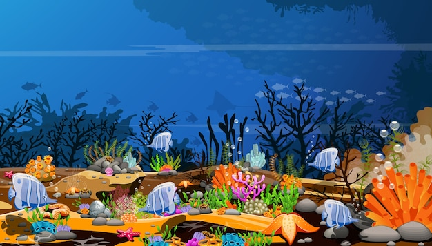 De wereld van diepzeevissen, de natuurlijke schoonheid en het leven van waterdieren op de zeebodem Premium Vector
