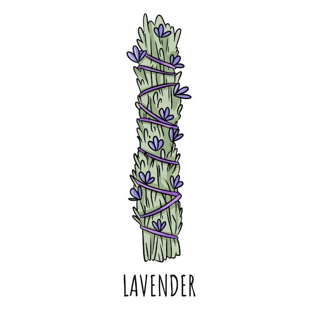 De wijze smudge stok hand-drawn krabbel geïsoleerde illustratie. lavendel kruidenbundel Premium Vector