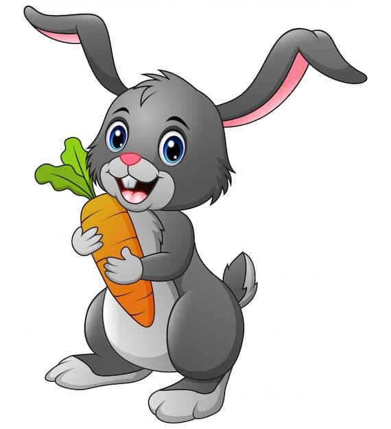 De wortel van de konijnholding op wit wordt geïsoleerd dat Premium Vector