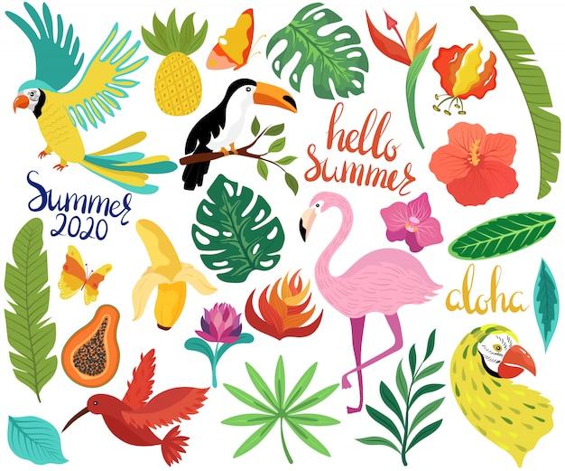 De zomerpictogrammen met tropische vogels en exotische bloemen vectorillustratie Premium Vector