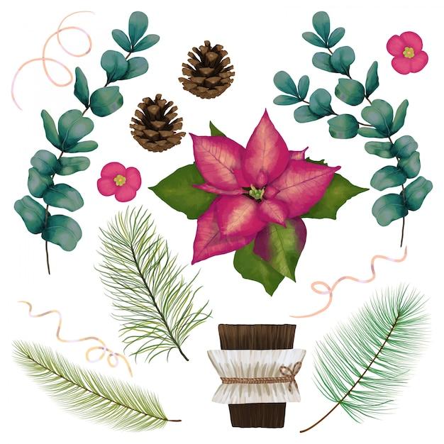 Decoratie set met bloemen en coniferen Premium Vector