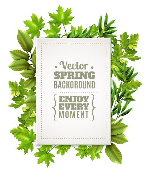 Decoratief frame met lente bladeren Gratis Vector