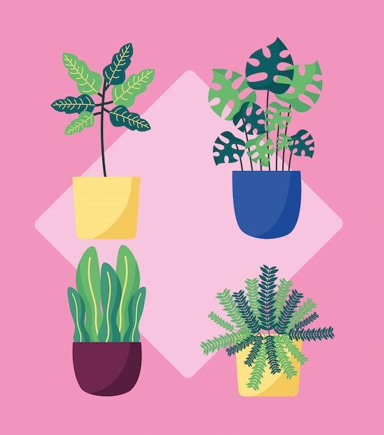 Decoratief planten plat beeldontwerp Gratis Vector